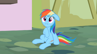 Rainbow Dash oh c&#39;mon S2E8