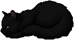 Hollyleaf.kit
