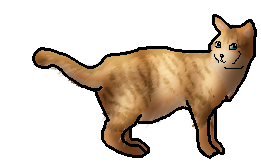 Nettle Warrior Cats