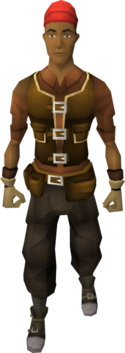 Artisan's armour set equipped