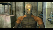 Gray Fox in Twin Snakes