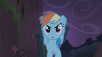 Rainbow Dash emerging from the shadows S1E02