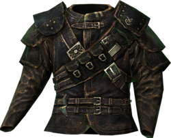http://images2.wikia.nocookie.net/__cb20121010145836/elderscrolls/images/thumb/e/ed/Guild_master_armor.png/250px-Guild_master_armor.png?height=200