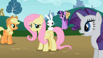 Angel sits on Fluttershy&#39;s back S2E07