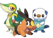 The three Unova starters