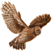 Item tawnyowl 01