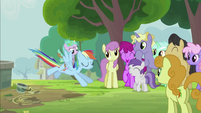 Rainbow Dash Landing Gracefully S2E8