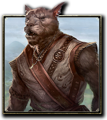 Online-race-khajiit