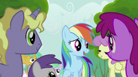Rainbow Dash Speaks to the Crowd S2E8