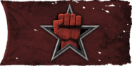 Spetsnaz flag BO