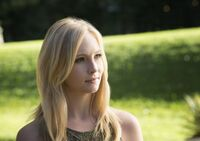 TVD 407x11