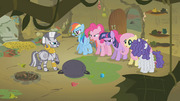 Main Six Confronting Zecora S1E09