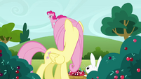Fluttershy &#39;Oh Pinkie Pie&#39; S3E3