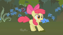Apple Bloom stops upon hearing Applejack S1E09