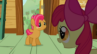 Apple Bloom &#39;and you seem like the perfect candidate&#39; S3E04