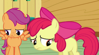 Apple Bloom depressed S3E04