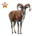 Item urial bronze 01