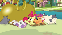 Apple Bloom &#39;Maybe we&#39;ll get our cutie marks in stupidest ideas of all time&#39; S3E04