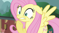 Fluttershy worried S3E05