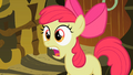 Apple Bloom Tooth 4 S2E6.png