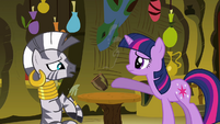 Twilight accidentally spills Zecora's drink S3E05