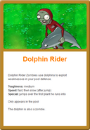 Dolphin Online