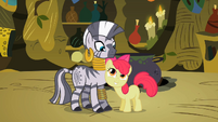 Apple Bloom flatters Zecora 2 S02E06