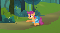 Scootaloo &#39;what about Rainbow Dash&#39; S3E06