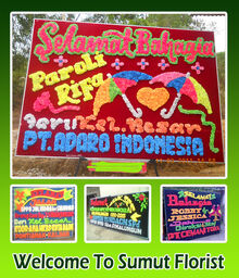 Display sumut group