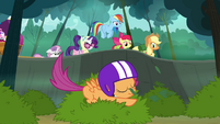 Scootaloo lands on the bush S3E06