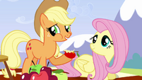 Applejack &#39;She is the best flyer in Ponyville&#39; S3E7
