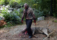 Walking-Dead-Zombie-Deer1