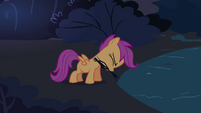 Scootaloo takes the branches S3E06