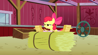 "Apple Bloom about to say ""Manehattan!"" S3E08"