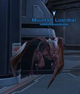Mountain Lizardbat
