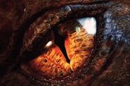Smaug eye