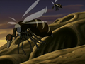 Buzzard wasps.png