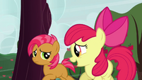 Apple Bloom &#39;Great!&#39; S3E08