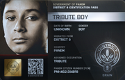 District 9 Tribute Boy ID Card 2