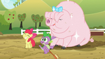 Spike, Apple Bloom, and sparkly pig S03E09