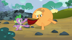 Spike and inflated Applejack S03E09