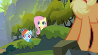 Rainbow Dash &amp; Fluttershy wide eyes S3E9