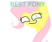 BESTPONY