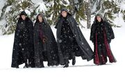 Unamed Volturi
