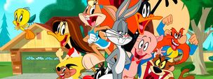 TLTS-oficially-renewed-the-looney-tunes-show-30864606-851-315
