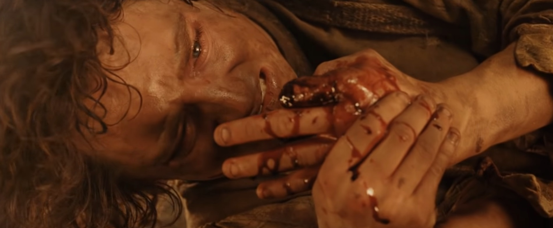 Frodo Baggins - Lord of the Rings Wiki Gollum Falling Into Mount Doom