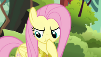 Fluttershy thinking &quot;that does explain the paper eating&quot; S03E10