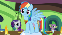 Rainbow Dash pleads with Fluttershy S03E10