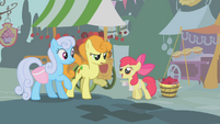 Apple Bloom selling apples to Golden Harvest and Shoeshine S01E12