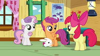 Apple Bloom &#39;And we haven&#39;t exactly figured out&#39; S3E11